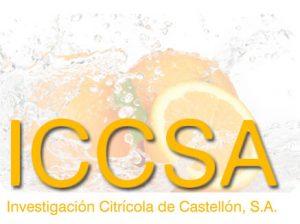 ICCSA-Vallfrut-Calidad desde su origen